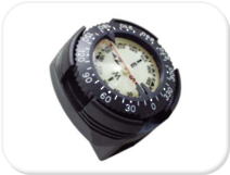 PD Gauge Mounted Compass