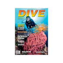Dive New Zealand Magazine